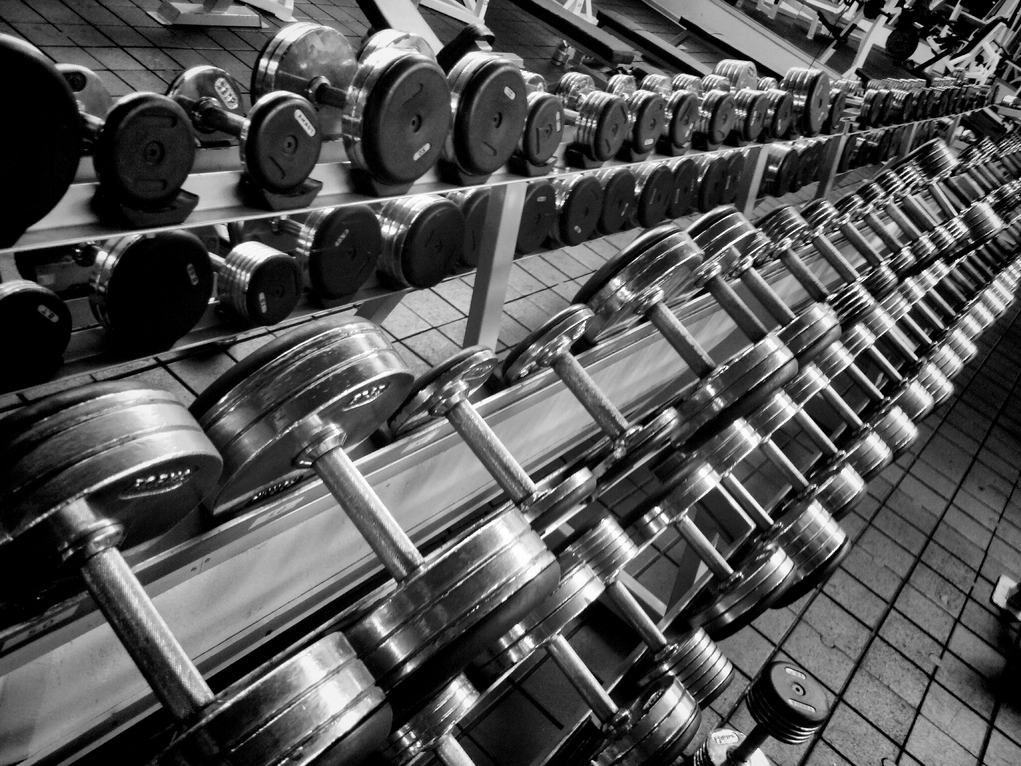Best Adjustable Dumbbells | Dumbbell Reviews in 2016