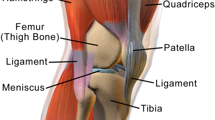 Why Am I Experiencing Knee Pain When Squatting?